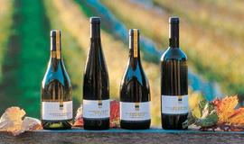 Nelson Wine
